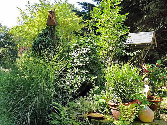 Leser-Fotos im Waterbölles von Gärten in Remscheid ...  Leser-Fotos im ...