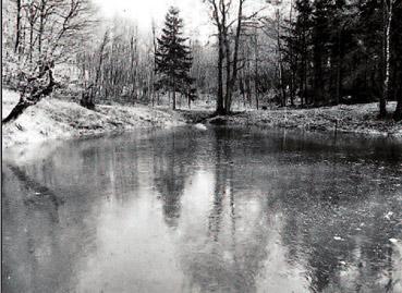 Klauser Hammerteich - Foto: G. Schmidt 1997