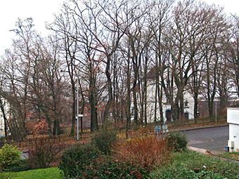 Auf diesem parkähnlichen Gelände sollen die 41 Wohnungen entstehen. Foto: Lothar Kaiser